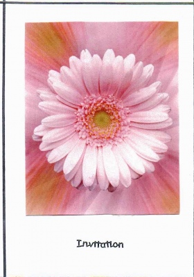 Dazzeling Pink Gerbera Wedding Invitation